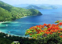 Profitez d'un séjour typique des Caraïbes aux îles Vierges Britanniques