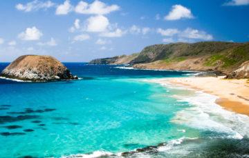 Panoramas inédits et plages enchanteresses : explorez l'archipel de Fernando de Noronha
