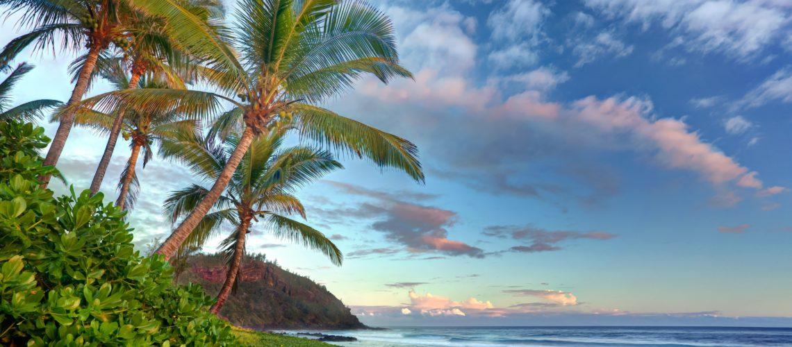S'expatrier à l'île de la Réunion pour évoluer dans un pays moderne et préservé