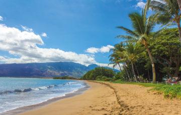 Eh oui, les USA ont aussi leurs paradis tropicaux… !