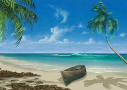 Les différentes raisons de vivre dans les tropiques