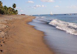 Que faire lors d'un séjour en Martinique ?